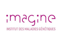 Image de logo de Imagine